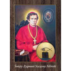 Pocztówka św. Zygmunt...